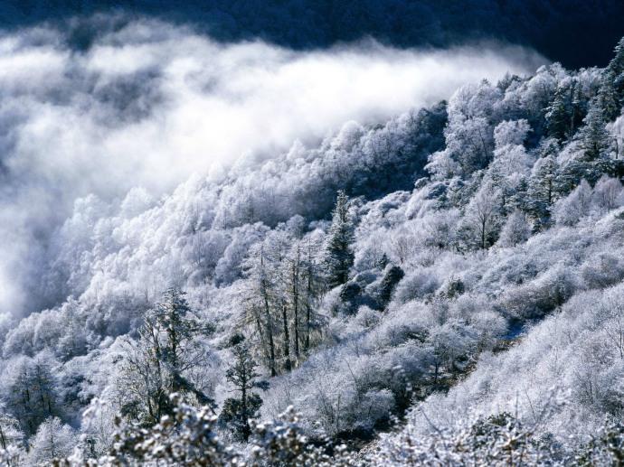 dreamy-snow-scene-fg_Snow_023_wallcoo_com